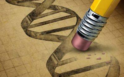 Epigenética: los efectos inesperados de la mente sobre nuestros genes