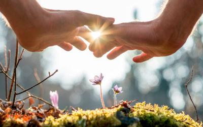 Terapias alternativas: cuando la sanación y el crecimiento espiritual se dan la mano