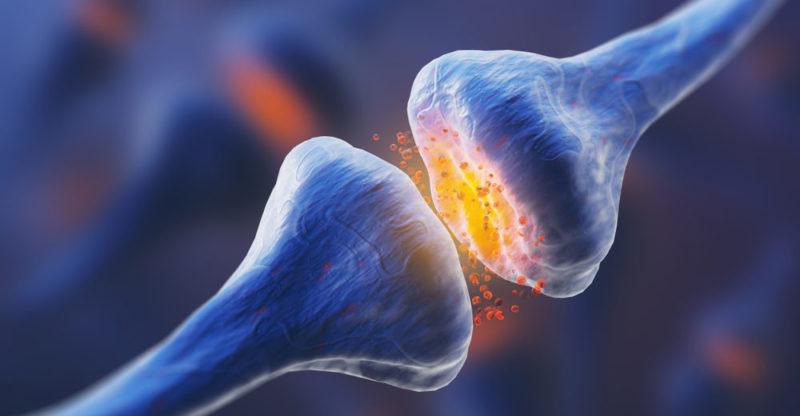Las terapias alternativas y el cáncer