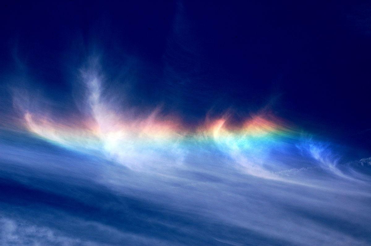 colores universalidad