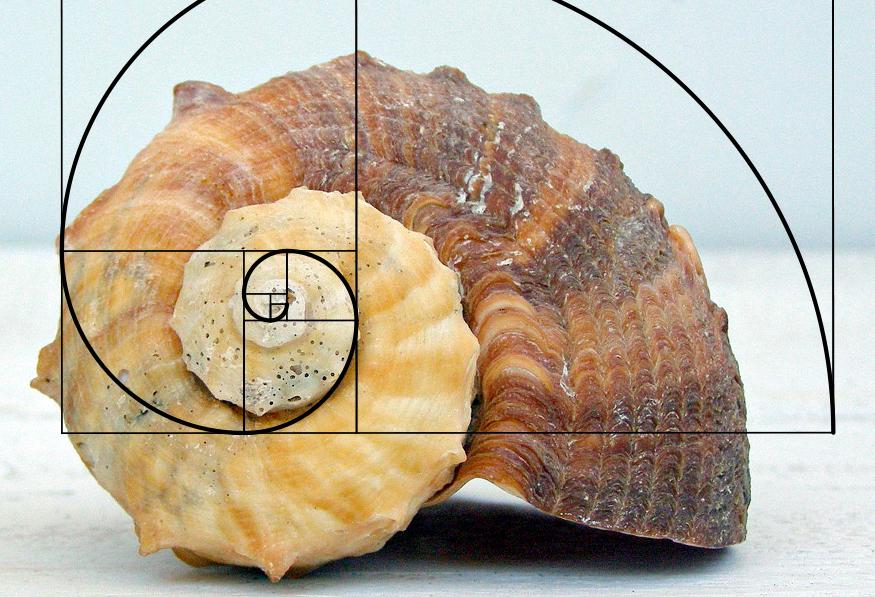 numerología razón áurea