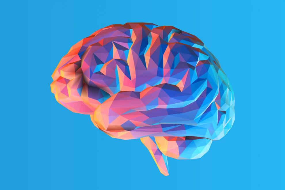felicidad cerebro