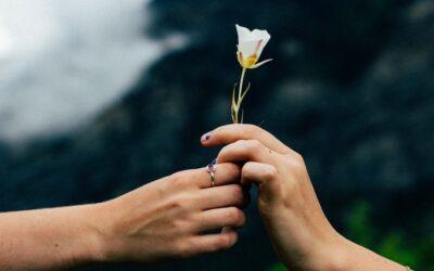 Estado de gratitud y energía. ¿Por qué la gratitud favorece tu bienestar?