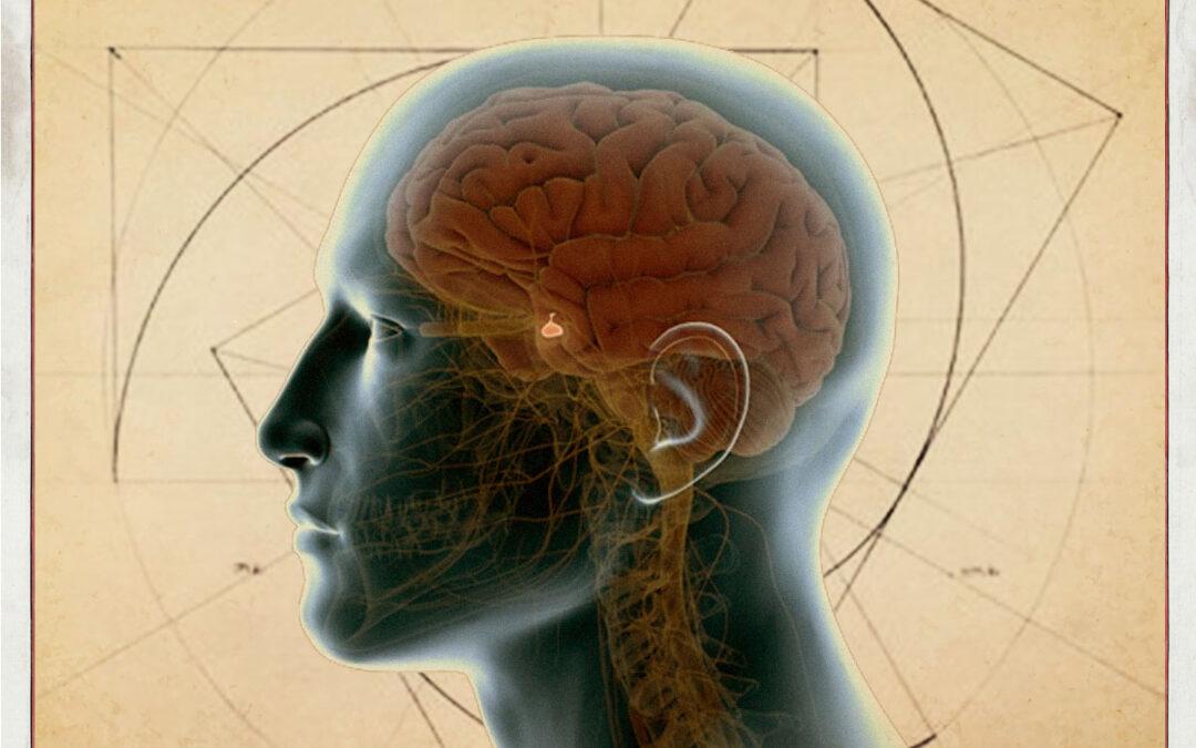 Herramientas que te ayudan a activar la glándula pineal