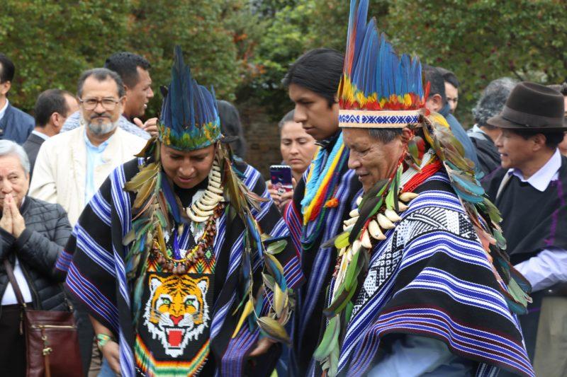 medicina alternativa indígena